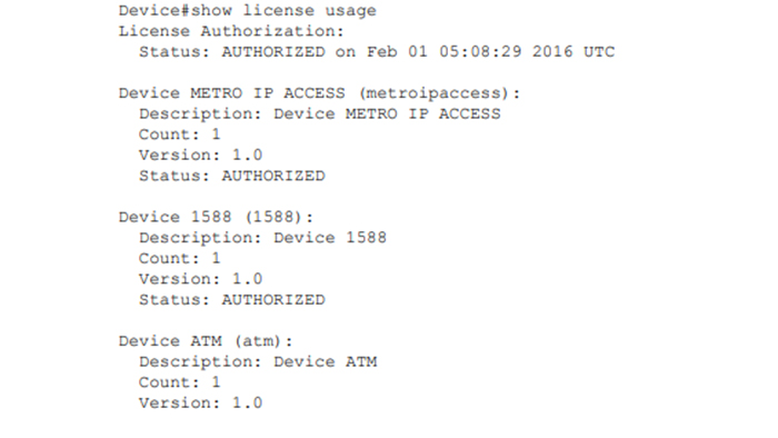 Smart license usage Command