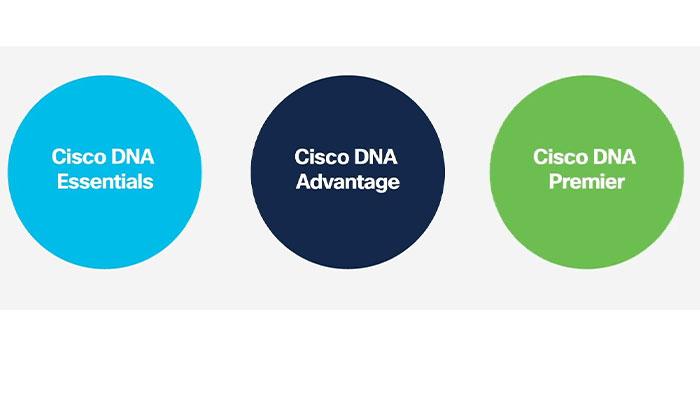 Cisco DNA License